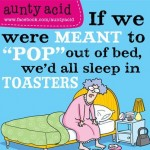 Sleep in Toaster